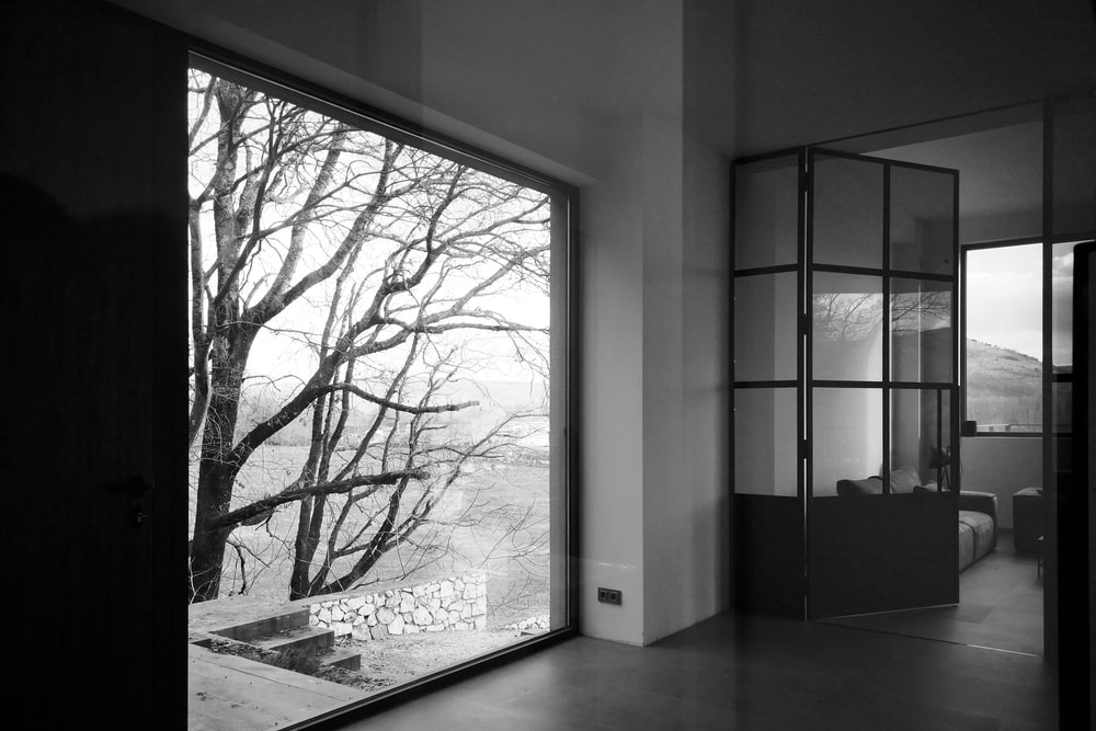A large window looks at some trees outside